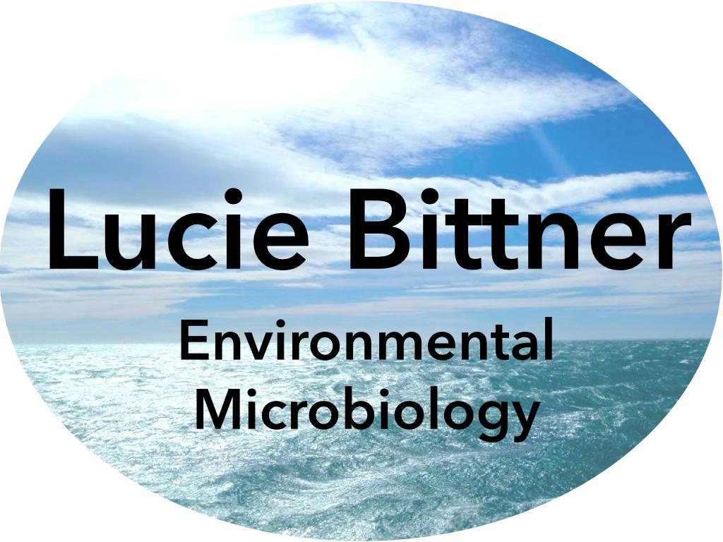 Lucie Bittner Ph.D.